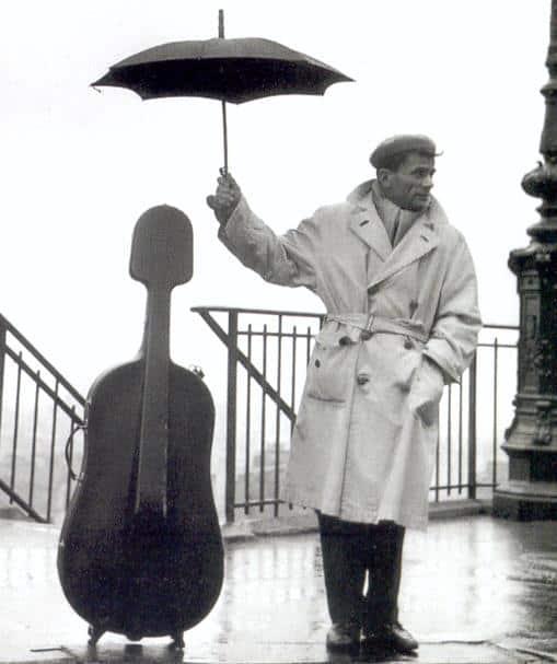 como cuidar un violonchelo 2